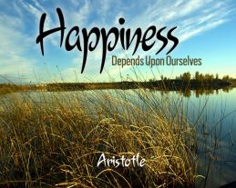 happiness bytes 2
